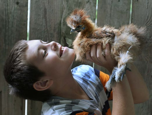 Brownsburg mom Sherri Frushon said they should be able to keep her son Anthony's therapy chickens without going through the approval process.