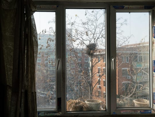 The view through a window in Han's apartment.