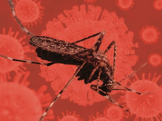 635907390390109326-WIL-0211-A1-zika-virus-cp-art.jpg