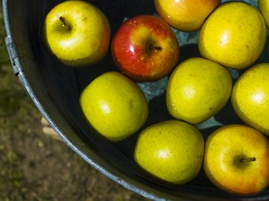 Evening Sun photo; Apples sit in a bucket during the Apple Blossom Festival in May at South Mountain Fairground.