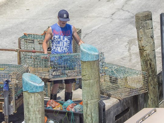 A lobsterman loads baited traps onto a boat at the Chatham (Mass.) Fish Pier.
