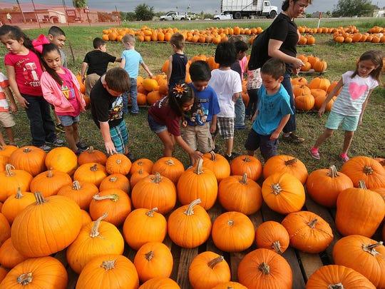 Grace United Methodist Church will host their annual pumpkin patch at 14521 Northwest Blvd.