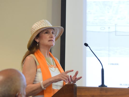 ANI RADD meeting Janet Schmitt addresses the special committee meeting of the City of Alexandria Council on the RADD plan Tuesday. -Melinda Martinez/The Town Talk
