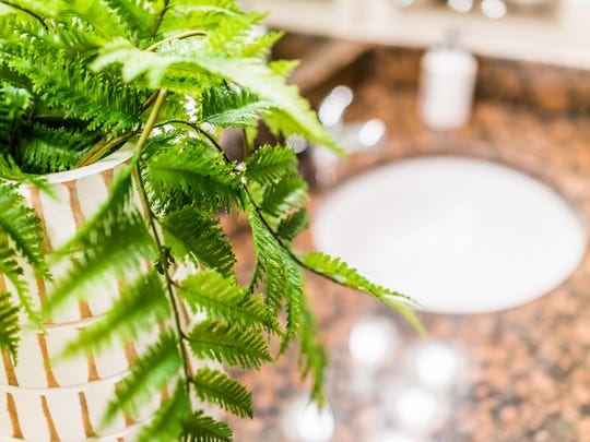 Closeup of modern bathroom sink with brown granite countertop and green fern plant