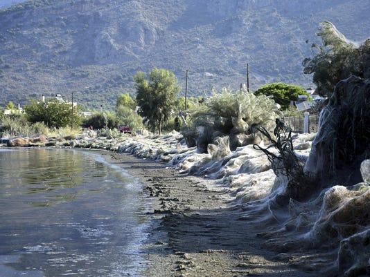 Greece Giant Web (6)