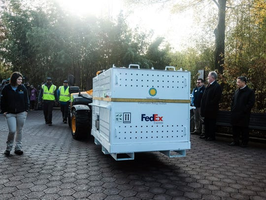 Smithsonian National Zoo and FedEx employees escort giant panda Bei Bei onto a FedEx truck as the bear departs the Smithsonian National Zoological Park to travel to China.