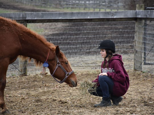 Monche adjusts to her new surroundings as Catherine Zimmerman establishes a rapport with the wild mustang.
