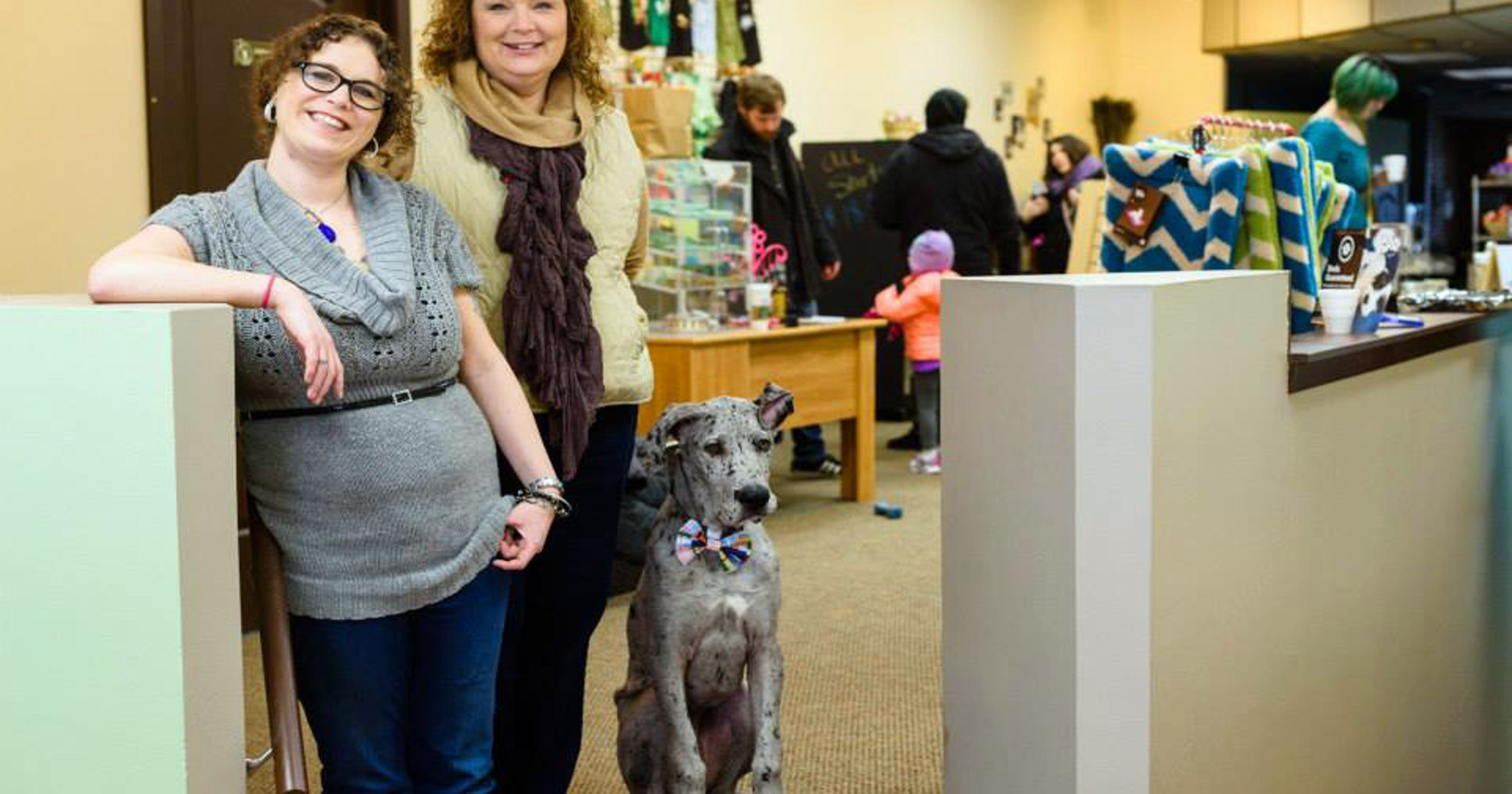 Cats, dogs find a home in businesses