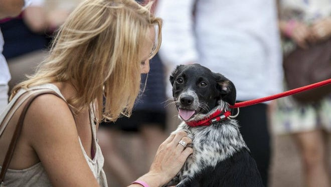 The 10th annual Feasting for Fido is set for July 26 at the Wisconsin Humane Society Milwaukee campus.
