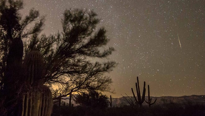 Orionid meteors from Tuesday morning at Saguaro National Park East in Tucson.