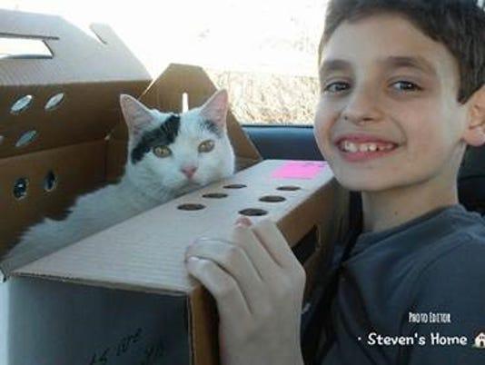 636573989537860149-Sara-Brunet-s-cat.jpg