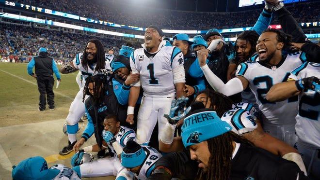 Panthers celebrate.