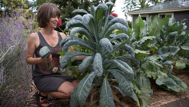 Megan Cain maintains 1,600 square feet of garden, growing nearly 100 varieties of vegetables and herbs in her relatively urban yard in Madison.
