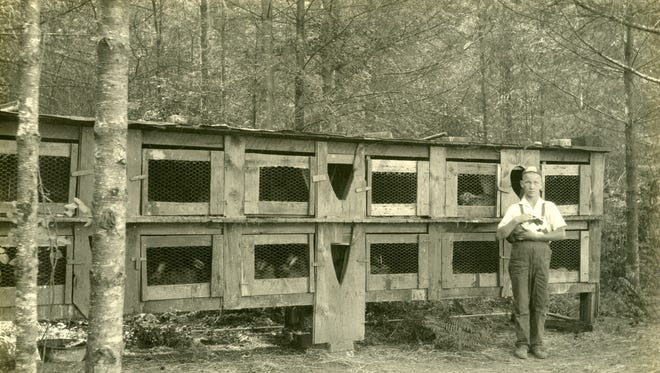 Raising rabbits is a time honored 4-H club project.  Shown in the 1930s at 4-H leader Bill Bogan's rabbitry near Phinney Bay in West Bremerton is a young club member holding a rabbit.  Look for the rabbit exhibits by area 4-H club members at the Kitsap County Fair later this month.   To see more photos from the Kitsap County Historical Society Museum archives, visit www.facebook.com/kitsaphistory , or stop by the museum at 280 Fourth St. in Bremerton. Call 360-479-6226 for information.