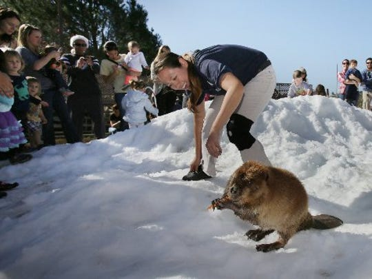 Winter comes to America's Teaching Zoo at Moorpark College.