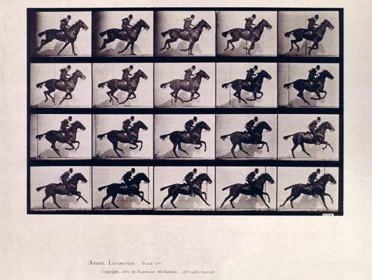 Pioneering British photographer Eadweard Muybridge