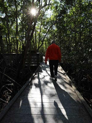 Boston resident Herb Robinson went for a stroll along the Four Mile Ecological Preserve boardwalk.