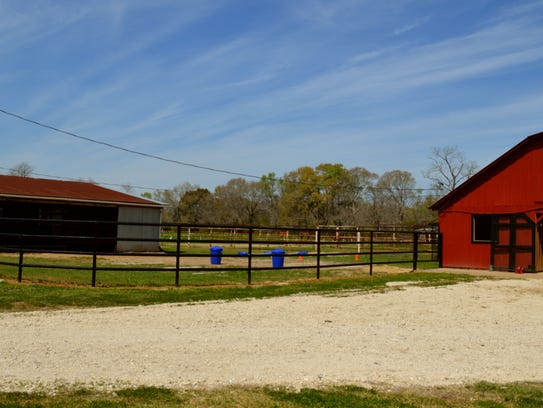 Dashing W Farms