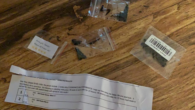 Some of the seeds Cassandra Thornton received from China. Arriving over time in three packages, one contained instructions for planting but the others had no directions at all.