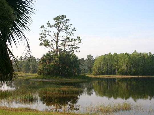John Welch, Riverbend Park naturalist, will lead free walks through Riverbend Park, located at 9060 Indiantown Road in Jupiter, from 8 to 9 a.m. Saturday, Dec. 24 and Thursday, Dec. 29.  Meet at the Parks and Recreation trailer at 8 a.m. For more information, call 561-741-1359.