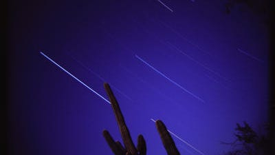 Stars streak across the sky during a 35 minute long exposure at Cabeza Prieta National Wildlife Refuge in Ajo. The star streaks show up as lines as the Earth's rotation moves the point of light across the film plane.
