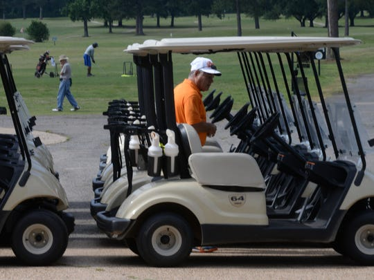 Jessie Gomes hopes into one of several carts available