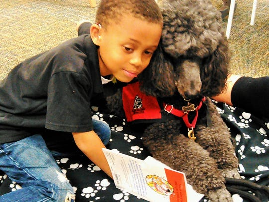 First grader William Bethel reads to therapy dog Sofie