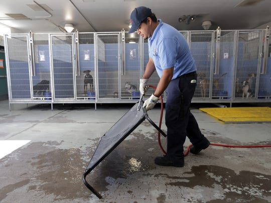 El Paso Animal Services Kennel Attendant Ernie Aguilar