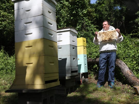 Frank Mortimer poses with some of his estimated, 360,000 Upper Saddle River bees, Sunday, June 11, 2017.