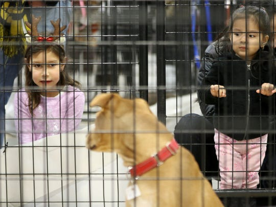 Rosalie Peterson, 5, of Fair Lawn and Amy Gordillo, 2, of Parsipanny look at Abby, of Posh Pets Long Beach Animal Shelter. Abby was one of about 600 cats and dogs at the Holiday Pet Super Adoption at the Meadowlands Exposition Center.