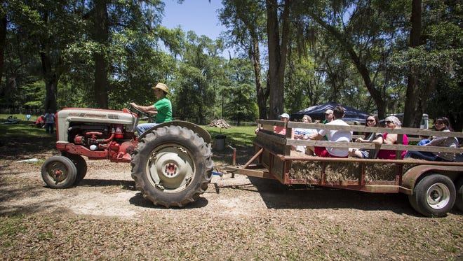 Festival goers receive a hay ride tour of Golden Acres Farm during the Mayhaw Berry Harvest Festival on May 8, 2016.