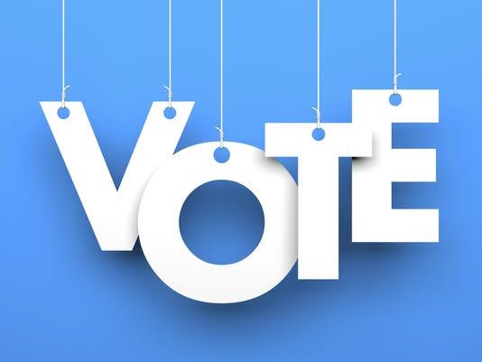vote3 (4).jpg