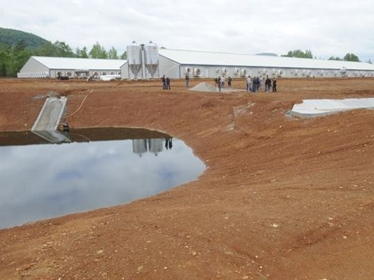 One of the manure retention ponds at C&H Hog Farms is seen in this file photo. The state has reached an agreement with the farm's owners to cease operations and allow the Arkansas Department of Environmental Quality to close the site.