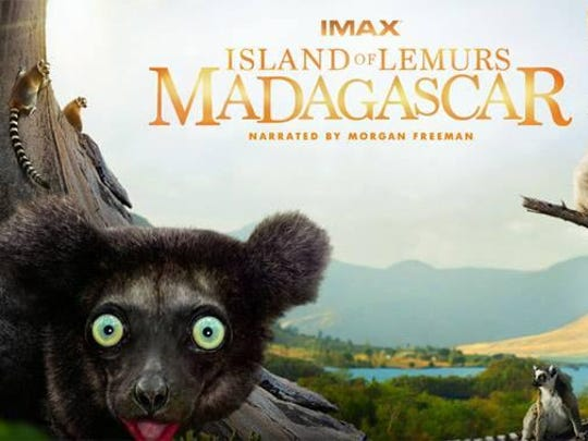 """""""Island of Lemurs: Madagascar"""" is an IMAX film at Sci-Port."""