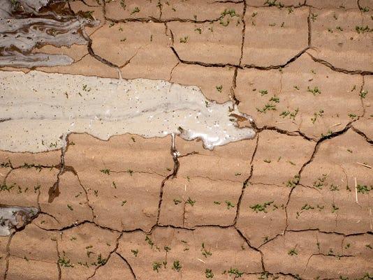 drought saudi arabia alfalfa fams arizona