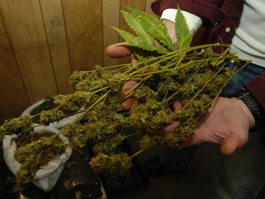Bergen County Police bust apartment growning Marijuana