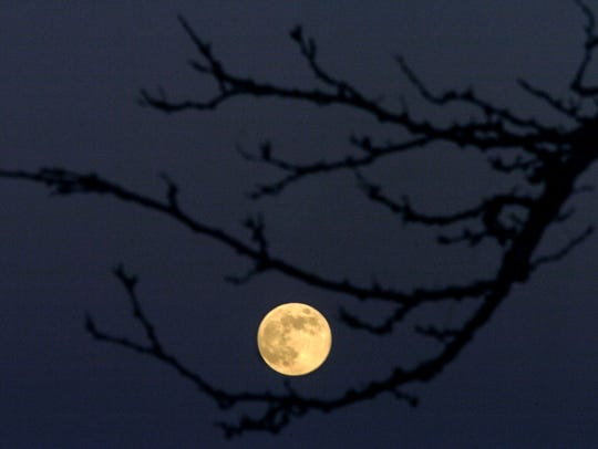 The full moon is framed by barren tree branches on
