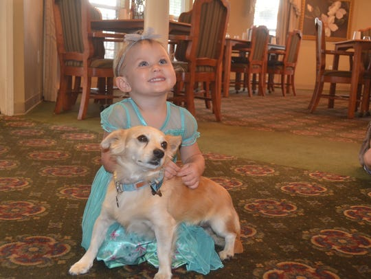 Two-year-old Daisye Pegg pets Sam at the dog's welcome