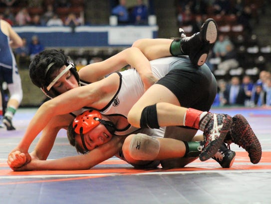 Andrew Krupp of New Lothrop, rear, grapples with Dallas Pibbles of Hudson during the MHSAA wrestling team finals on Saturday, Feb. 24, 2018, in Kalamazoo.
