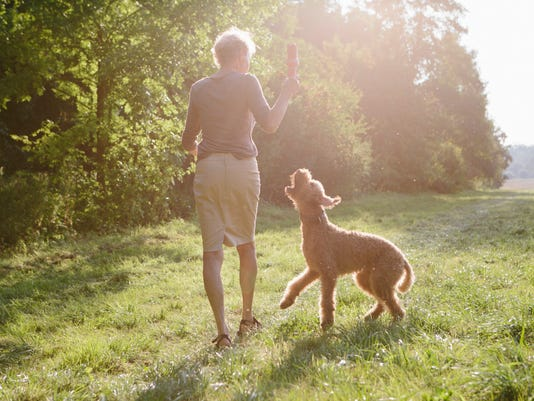 UVM Medical Center - Senior woman walking with her dog between fields and forest