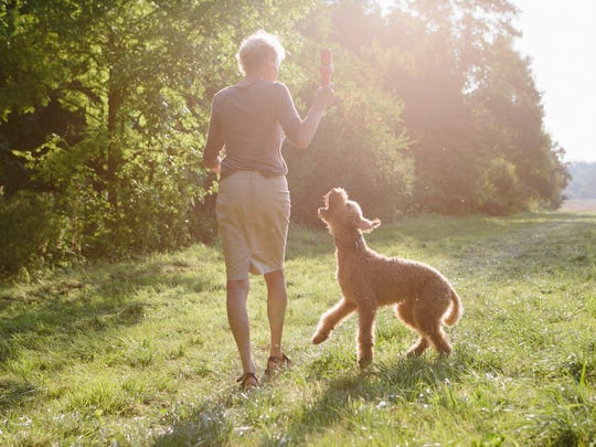 Senior woman walking with her dog between fields and