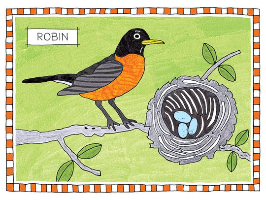 """James Hogarth, """"Robin,"""" drawing in pen and color markers"""