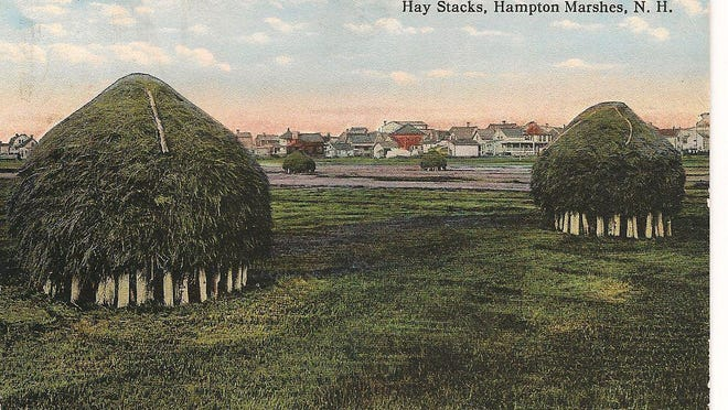 The Hampton salt marsh with many haycocks on staddles looking toward Hampton Beach.
