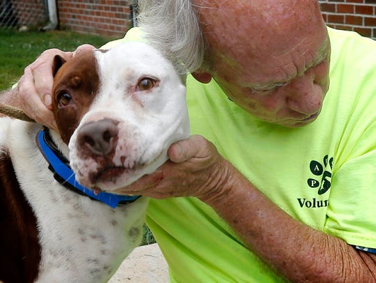 PAWS volunteer Warren Bell shows some love to one of