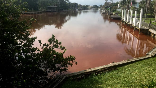 Reports of a plankton bloom in the canal between Sunset Road and Aucilia Road in Cocoa Beach started Monday with the canal having a very red tint to it. Some had suspected an algae boom while others suspected a spill. The reddish color was only near the canals near the two streets.