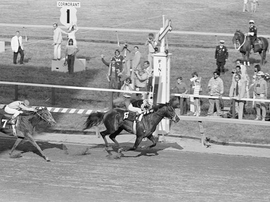 Seattle Slew with Jean Cruguet in the irons wins the 102nd running of the Preakness States at Pimlico race course in Maryland  on Saturday, May 21, 1977.