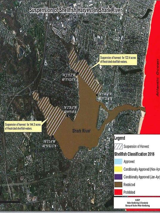 636137731448768158-shark-river-beds.jpg