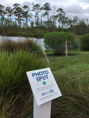 "This is one of the ""photo spot"" locations on the FGCU"