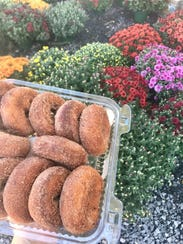 The cider doughnuts at Dubois Farms are plump, doughy