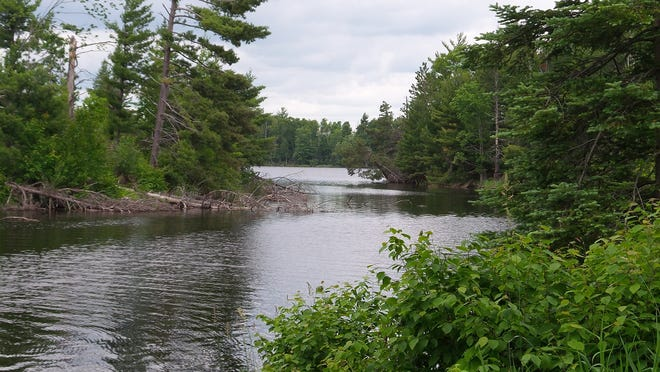 Some of the campsites on the Turtle Flambeau Flowage have large picnic tables, a fire ring and, of course, an open camp toilet. This is the view to the west of Mike Gruenke's camp looking down the channel between two islands.
